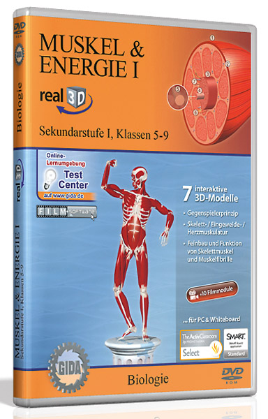 DVD: Muskel & Energie I - Software real3D