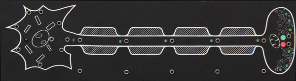 Demonstrations-Neuron-Modul zu BIOMODUL