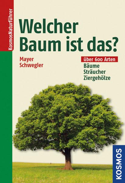 LIT: Welcher Baum ist das?
