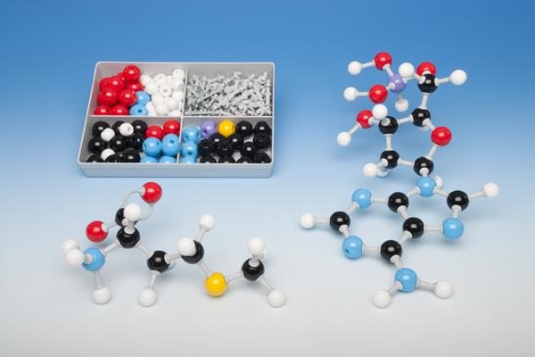 Molekülbaukasten für Schüler zur Biochemie