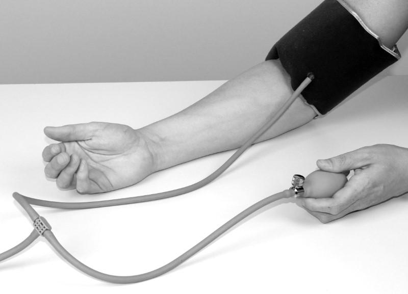 Der Blutdruck - Digital