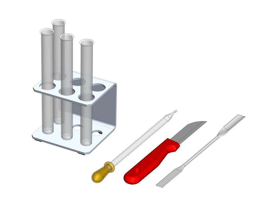 Das Enzym Katalase als Biokatalysator