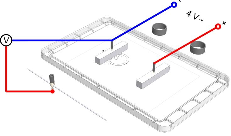 Äquipotentiallinien zwischen gleich geformten Elektroden